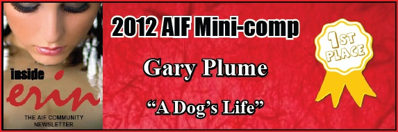 2012 AIF Mini-comp Winner